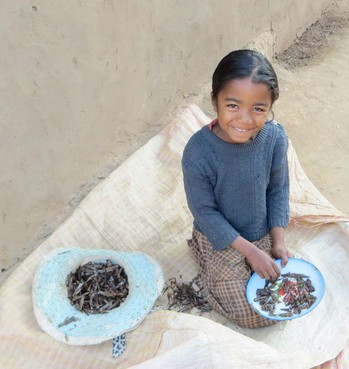 A young girl prepares locusts for supper in the Tsiroanomandidy area of Madagascar