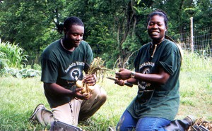 Youth agricultural camp at the Federation of Southern Cooperatives' training center in Alabama.